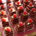 Image of raspberry dark chocolate dessert squares