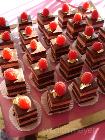 Image of raspberry dark chocolate dessert squares