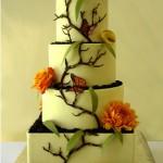 Monarch butterfly cake Santa Cruz
