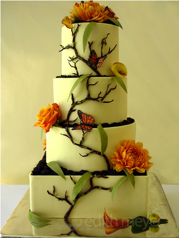 Monarch butterfly cake Santa Cruz
